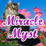 Miracle Myst